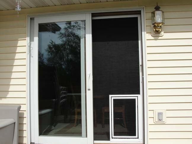 Pet door for sliding screen door