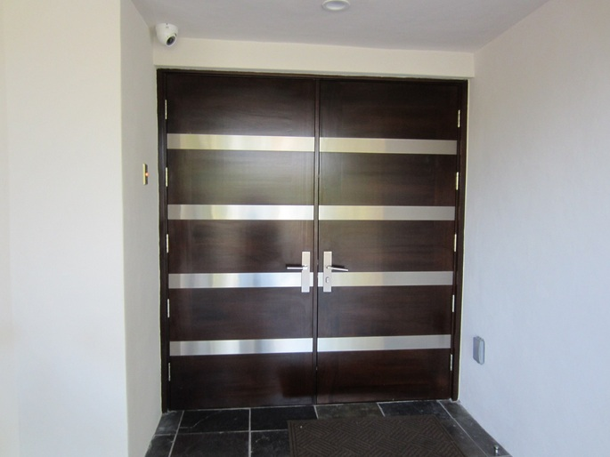 Contemporary brown front door designs with stainless accent panel