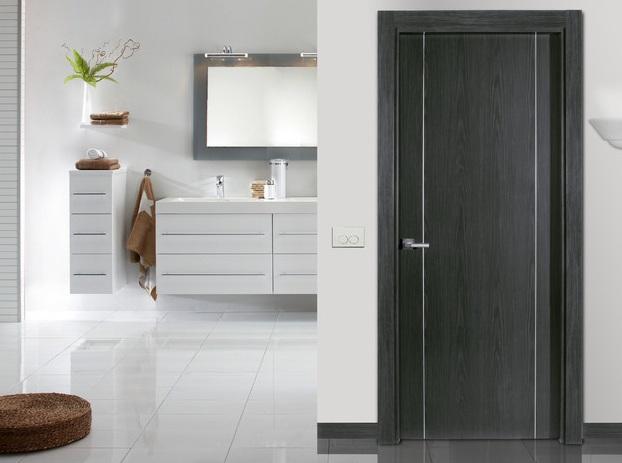Modern Flush Interior Door For Bathroom Home Doors Design
